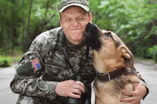 Military Dogs and Handlers