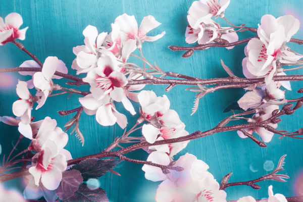 Need Ideas for Spring? Here's a Checklist