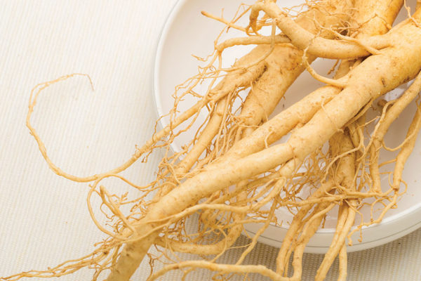 The Ginseng Crime in the Blue Ridge