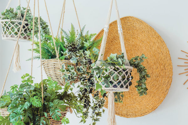 Green-Thumbs-Gone-Wrong Anonymous: Tips on decorating with artificial plants