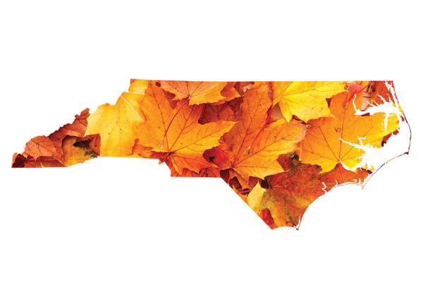 North Carolina's Best Places for a Fall Getaway