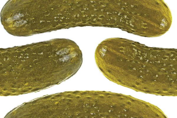 The Marveling Story Behind the Bread-and-Butter Pickle Sandwich