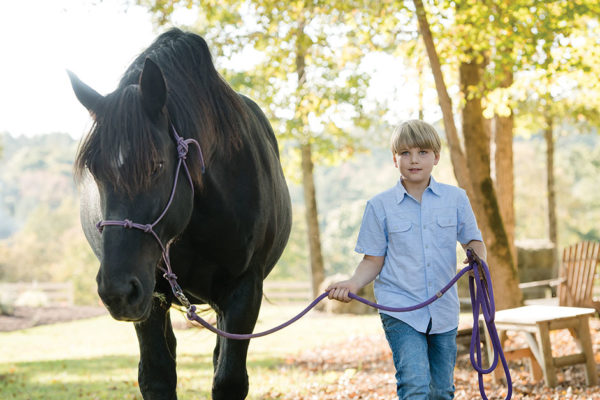 2,000 Pounds of Hope.  3 Broken Hearts.  One place called Hope Reins.