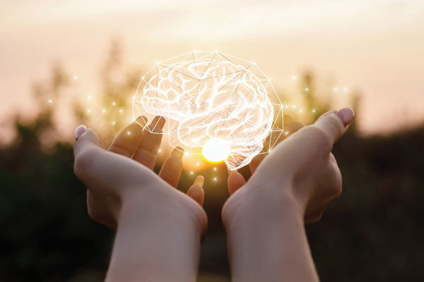 Maintain Your Brain: Keeping Your Brain Healthy As You Age