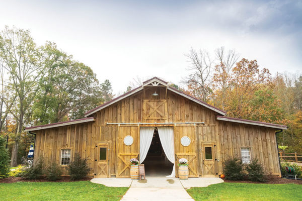 Drink Local at Davidson County's Old Homeplace Vineyard